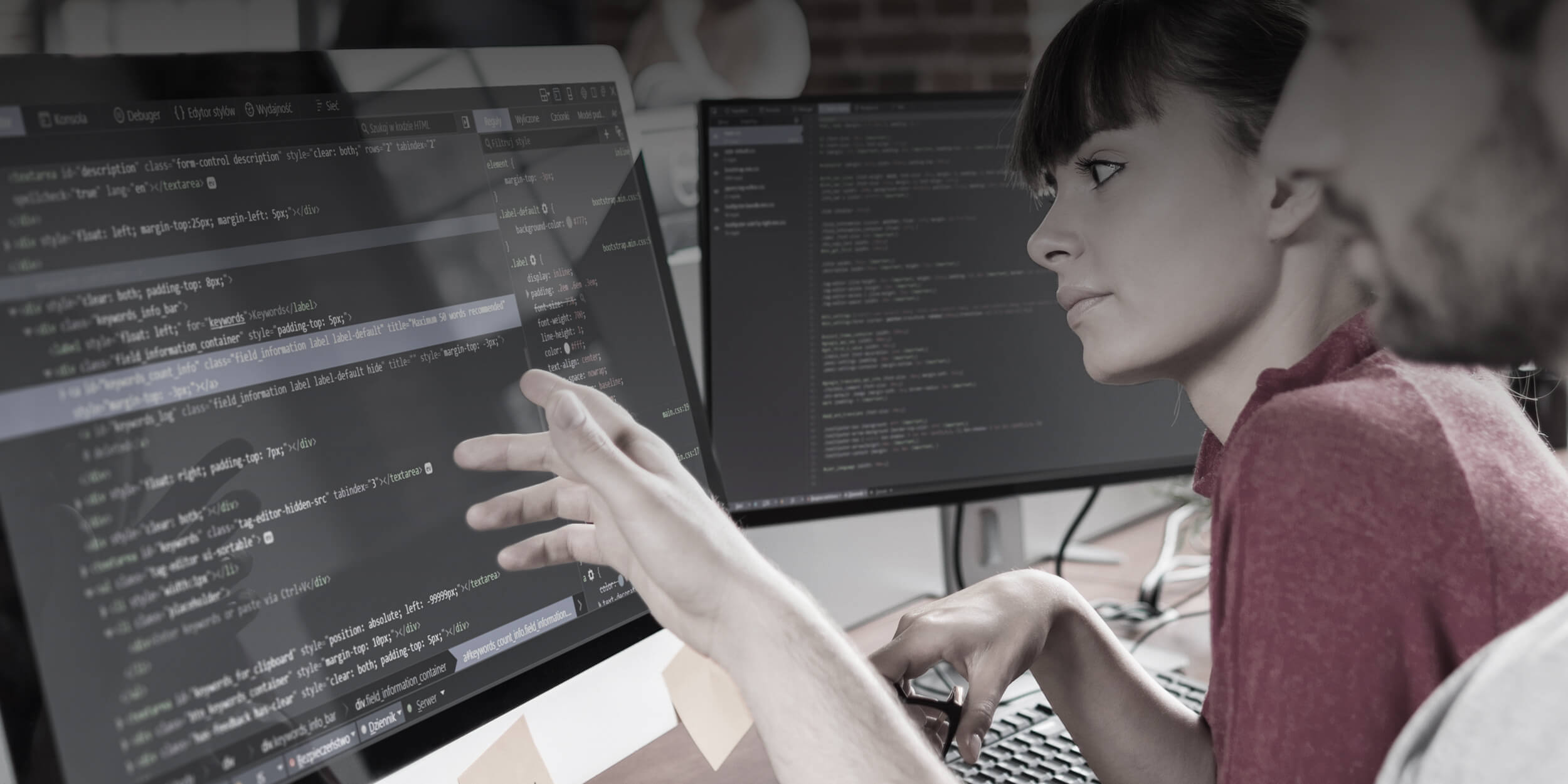 Designing and Creating specialized software